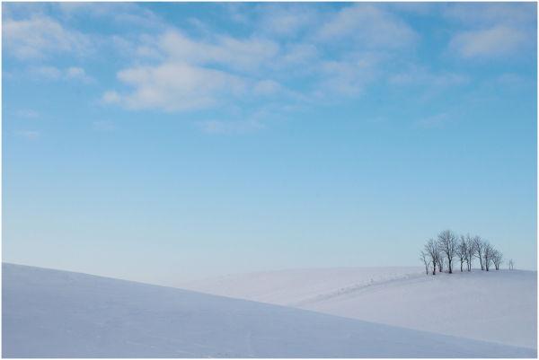 Winter landscape seasons