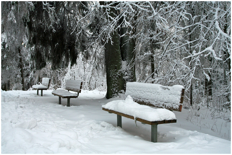 Bench in winter