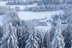 White Christmas in Estonia
