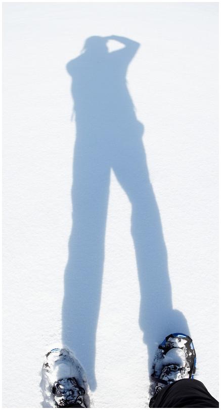 Shadow on snow