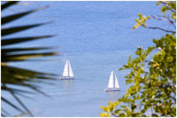 Sailing boats, Madeira