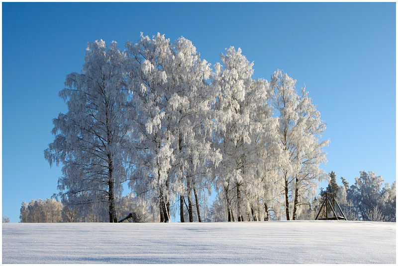 Village swing in winter