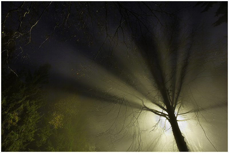 Valguskiired