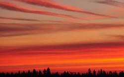 Hommikused värvid / Morning colors