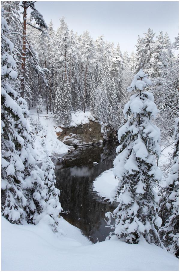 Talvine maastik