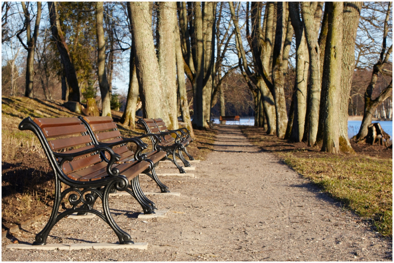 Vanas pargis / In old park