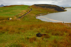 Pseudocrater at Myvatn lake, Iceland