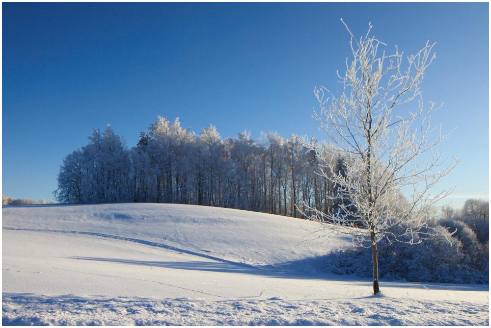 Kena talvepäev