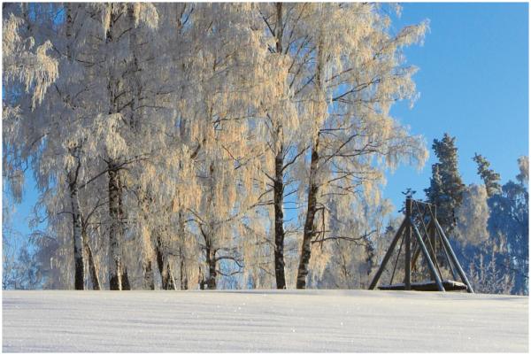 Talvepuhkusel / Winter holiday