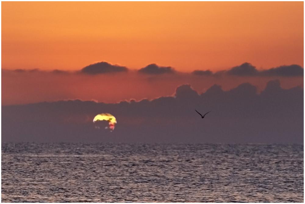 Päikese poole