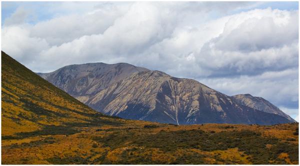 View from TranzAlpine Express, New Zealand