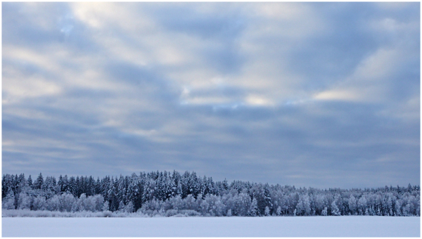 Talvepäev