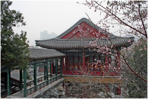 Kirsiõite aeg / Cherry blossom time