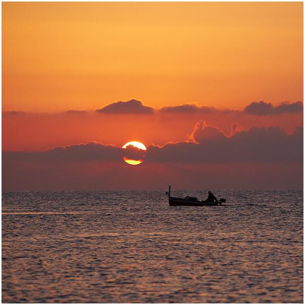 Kalamees / Fisherman