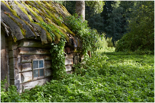 Vana sann / Old sauna