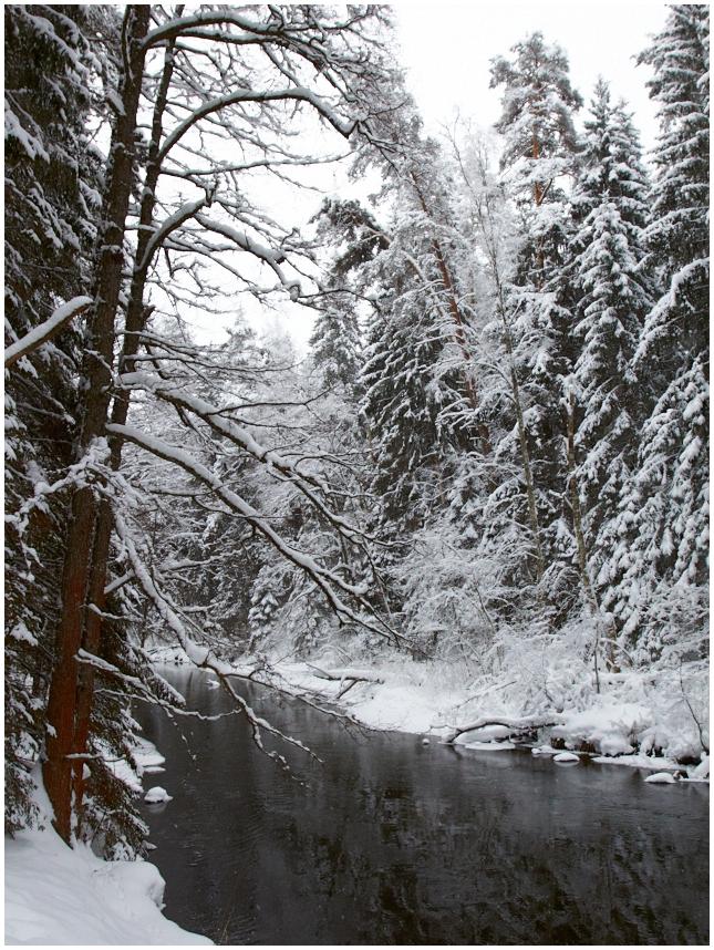 Talvine vaade