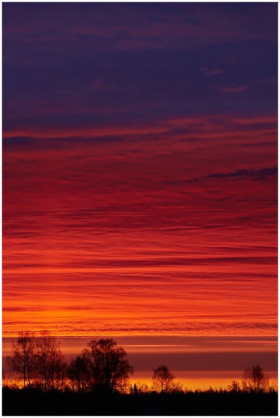 Hommikused värvid