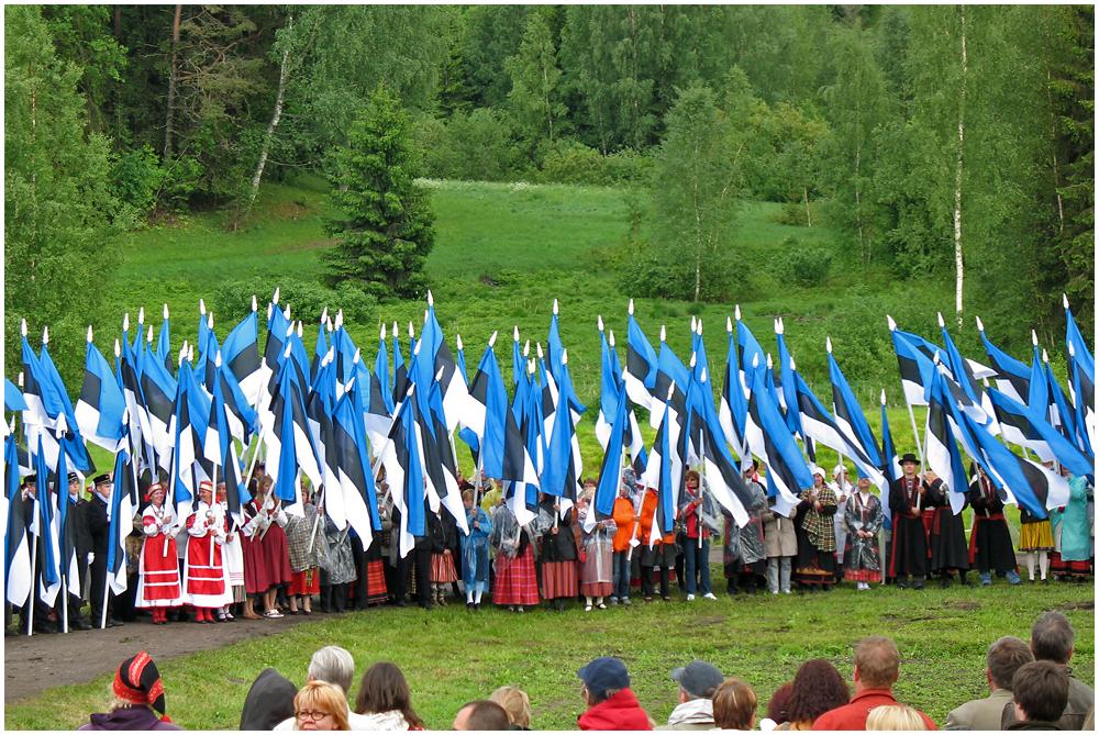 Estonian flag 130