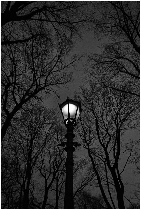 Pargis / In the park