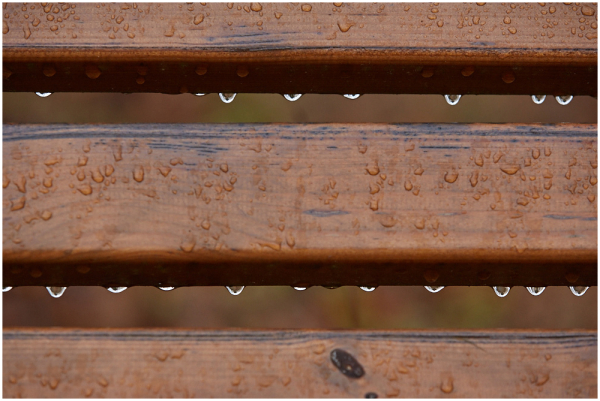 Peale sadu / After the rain