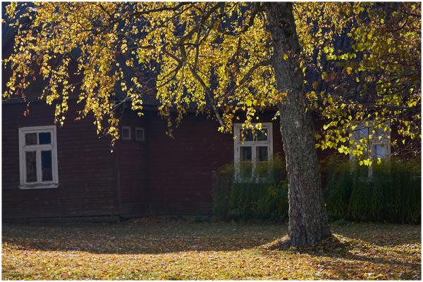 Vana koolimaja
