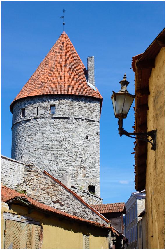 Tallinn, 5