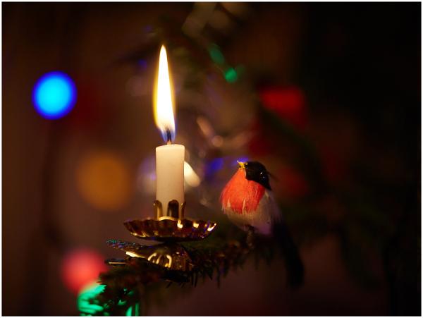 Jõuluõhtu / Christmas Eve