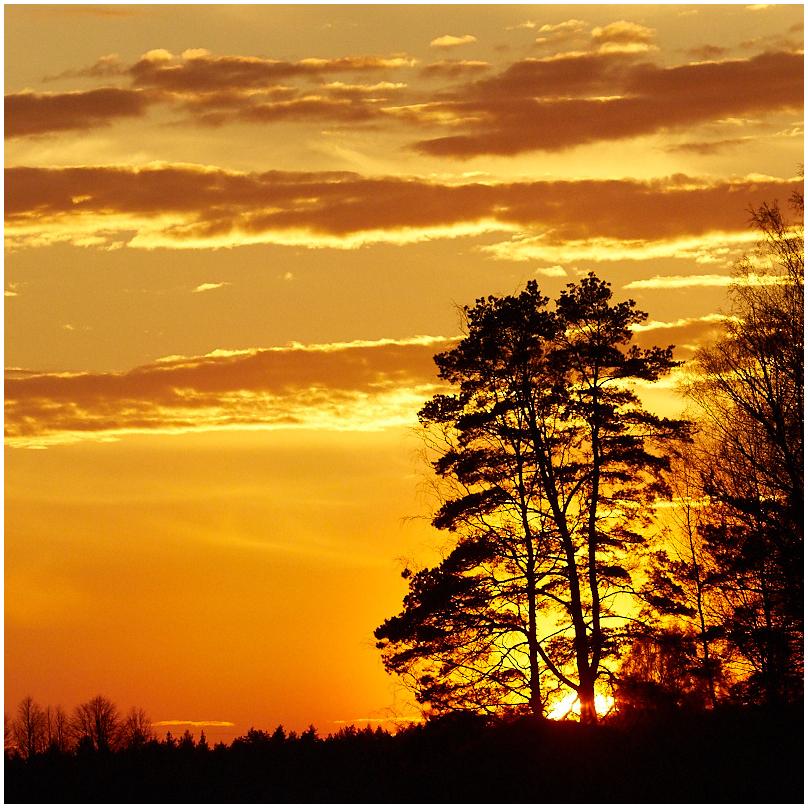 Loojangu aeg / Sunset time