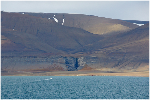 Diskobukta birds colony, Edgeøya, Svalbard