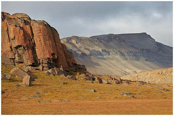 Tundra toonid