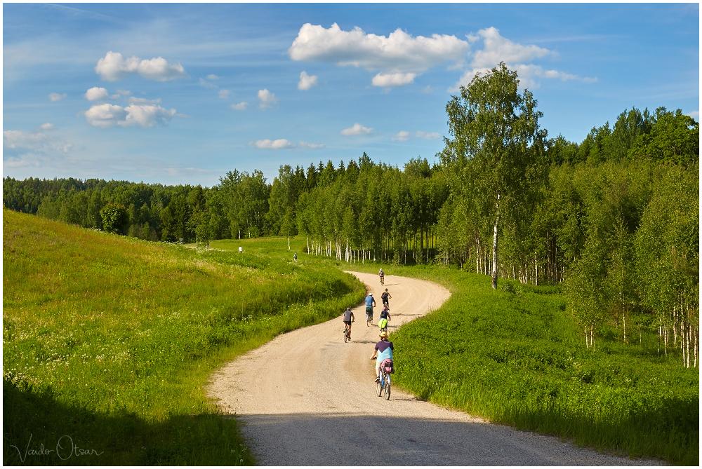 Lõuna-Eesti