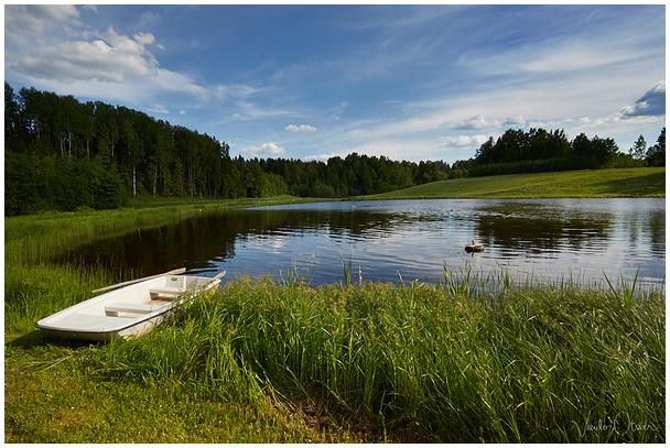 Kalda järv