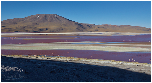 Red Lagoon   Laguna Colorada, Bolivia, 4