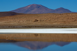 Andide värvid / Colors of the Andes, 3