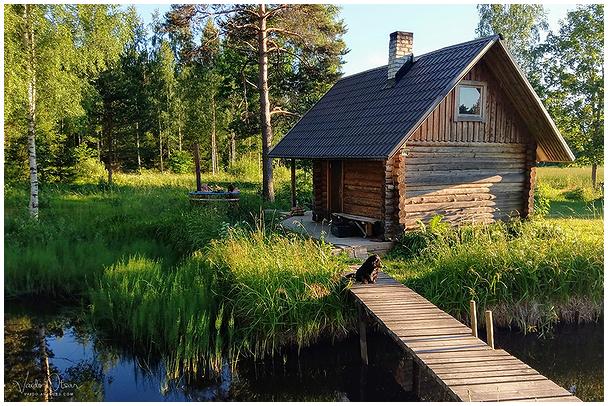 Sauna taga tiigi ääres