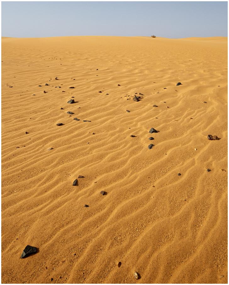 Sahaara kõrb