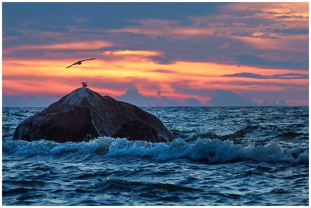 Mere ääres / By the sea