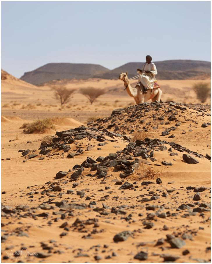 Sahara kõrb