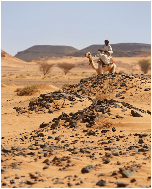 Sahara kõrb / Sahara desert
