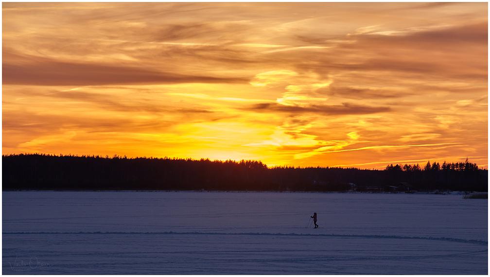 Tamula järv talvel