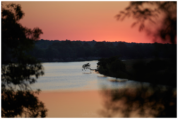Chobe jõgi / Chobe River