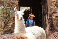 Jatun Yampara, Bolivia