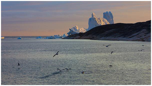 Gröönimaa rannik / Greenland coast