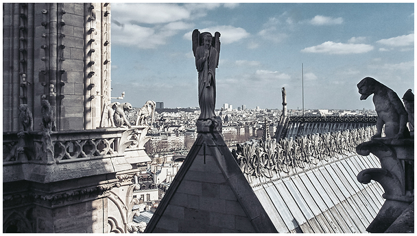 The roof of Notre-Dame