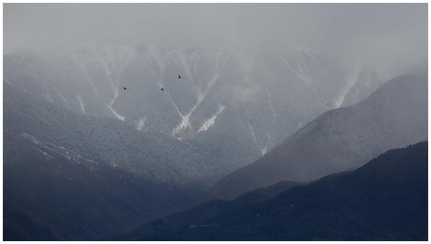 Jaapani Alpid