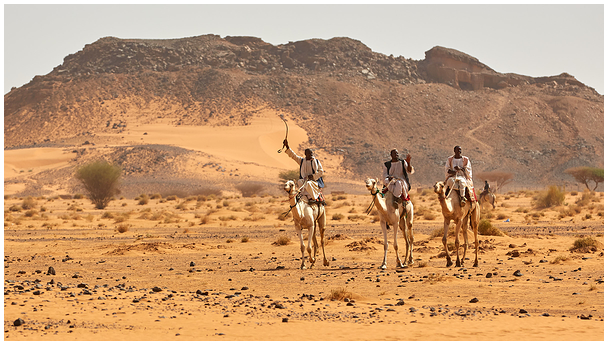 Ratsamehed / Camel riders