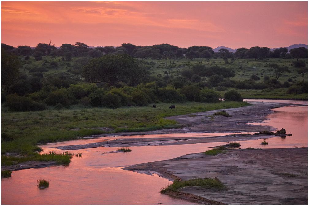 Tarangire jõgi