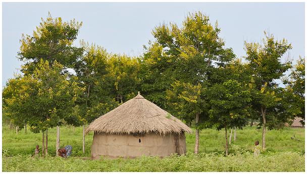 Onnike / A hut