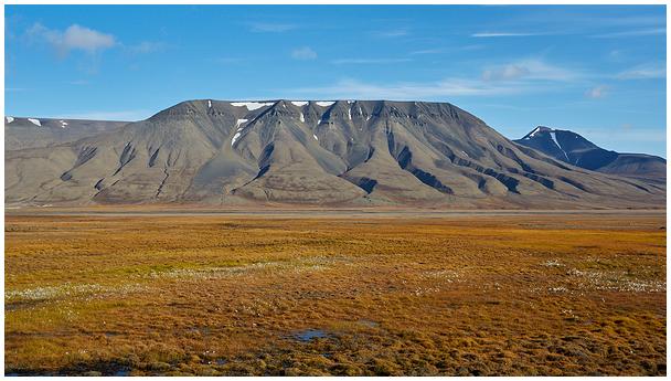 Suvi Teravmägedel / Summer in Svalbard