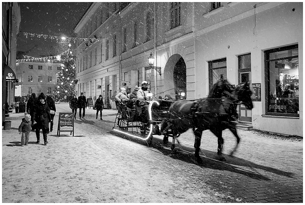 Jõulune / Seasonal, 2